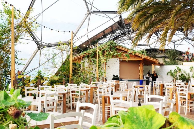 biome-cafe
