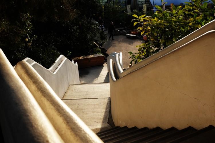 mediterranean-biome-steps-in-light