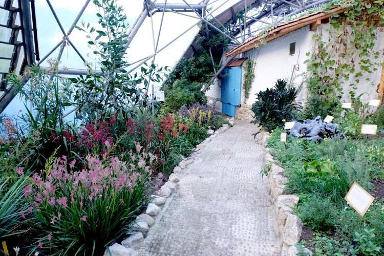 mediterranean-veg-garden