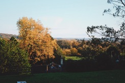 A view of Wiltshire from Air BnB cottage