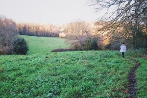 Winter walks in Wiltshire