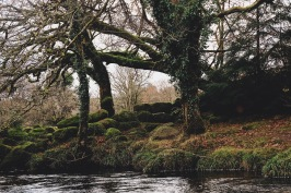 Riverside, Dartmoor