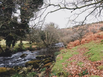 Riverside walks across Dartmoor